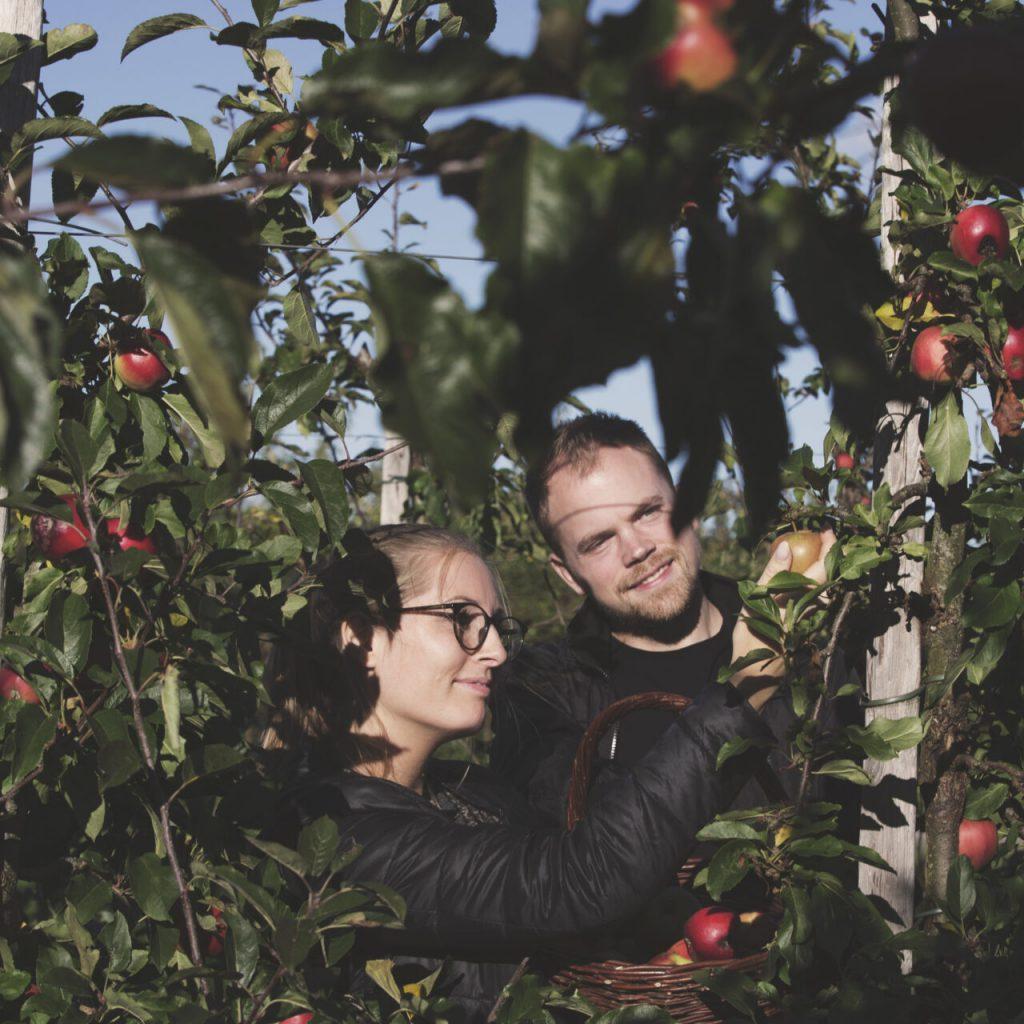 couple_apples (1)